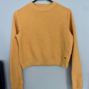 hollister cropped yellow crew